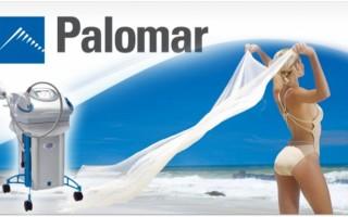 Как вязать узел Паломар схема и описание