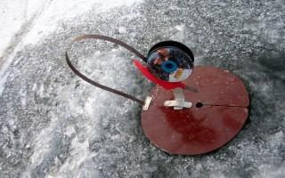 Жерлицы для зимней рыбалки делаем своими руками