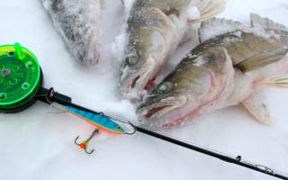 Ловля на балансир зимой — подробное руководство