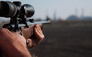 Как выбрать ружье для охоты: руководство для новичков