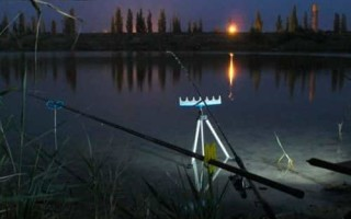 Ловля белого амура на фидер ночью