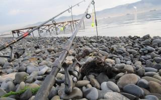 Ловля На Спиннинг На Море