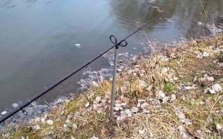 Специфика использования хищного фидера — читайте на Сatcher.fish
