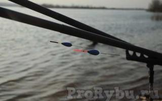 Ловля мирной рыбы на поплавочную удочку Секреты успешной рыбалки с удочкой