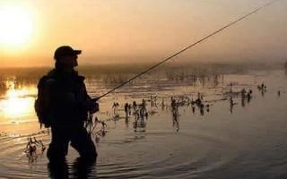 Снасти для и способы ловли щуки спиннинг кружки жерлицы джиг