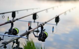 Лучшие удочки для летней рыбалки на реке: обзор 2019 года маховых, болонских, поплавочных, телескопических удочек 5, 6, 7 метров