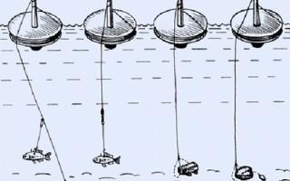 Ловля карпа на кружки — минимум усилий, максимум результата